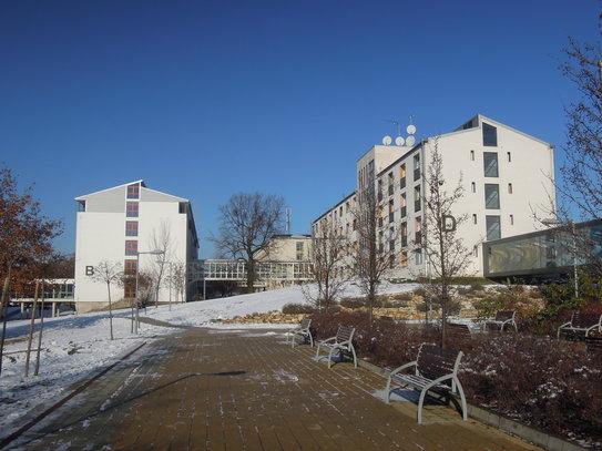 Nyílt nap, 2012. december